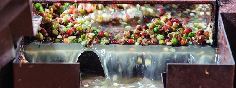 Мокрая обработка зерна